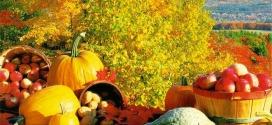 La dieta dell'autunno di Barbara D'Urso a Pomeriggio5