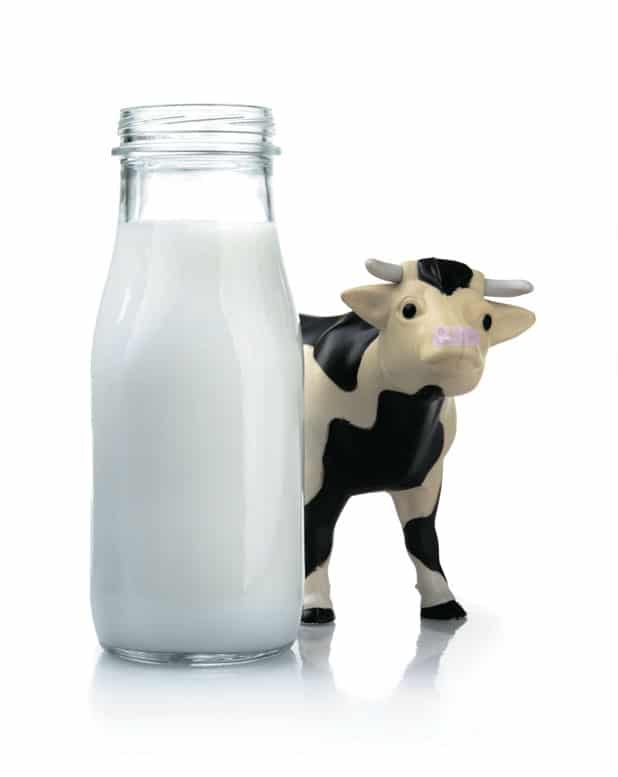 Il mondo del latte: differenze tra i vari tipi di latte