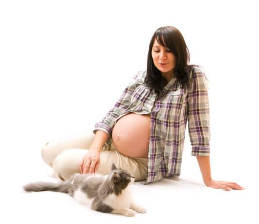 toxoplasmosi in gravidanza