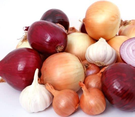 cipolla aglio scalogno
