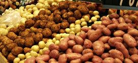 La patata: un alimento versatile in cucina e dalle ottime proprietà nutritive!