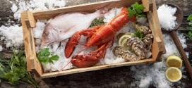 La dieta nordica: iperproteica e salutare?