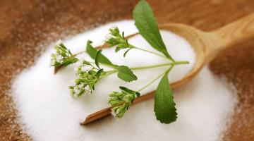 stevia dolcificante