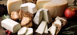 Formaggi sì o formaggi no in dieta?