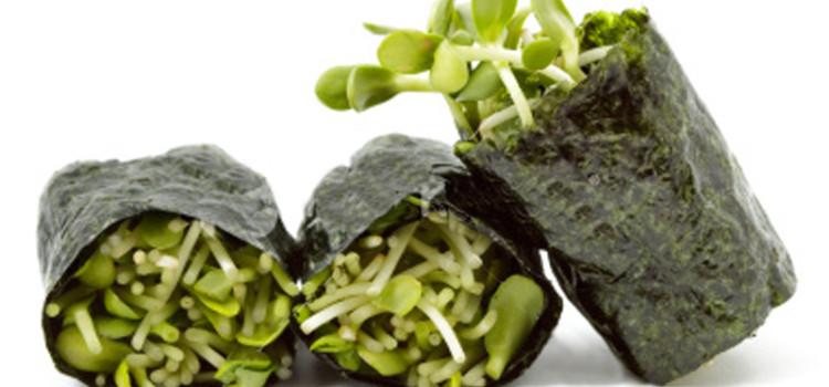 Le alghe in cucina i loro benefici e utilizzi vivo di benessere - Alghe in cucina ...