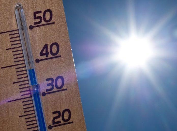 caldo estate