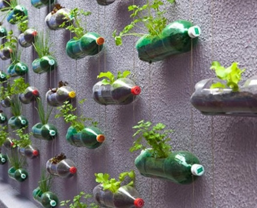 bottiglie vasi -giardino-verticale