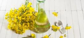 L' olio di colza fa male?