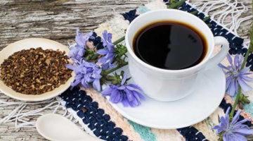 caffe di cicoria