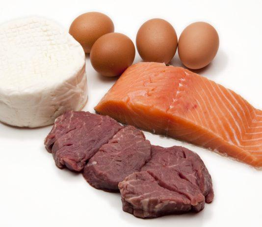 dieta plank proteica