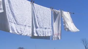 bucato bianco
