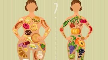 dieta-metabolismo-pomroy-star-america