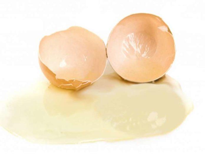 albume d'uovo