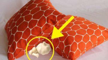 cuscino-aglio