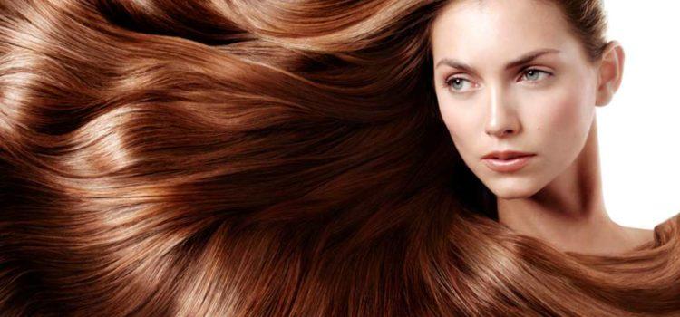 Strada di trattamento di olio di bardana di capelli