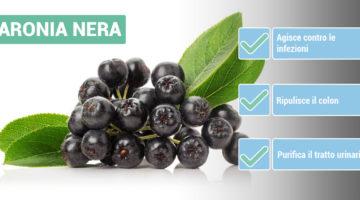 benefici-ARONIA
