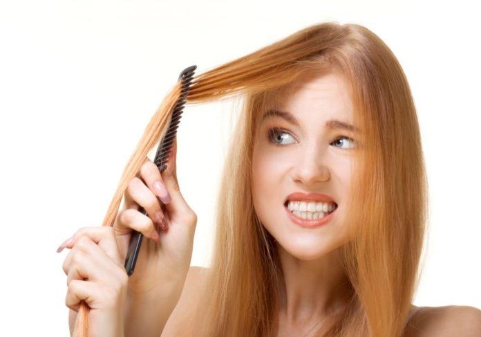 capelli sfibrati erilia