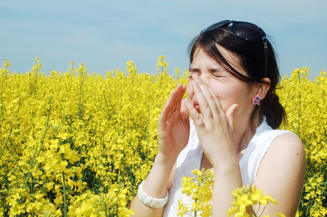 oli essenziali per trattare le allergie