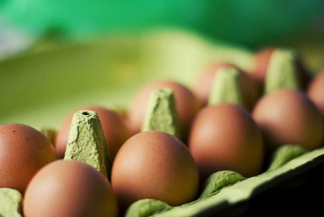 alternativa alle uova