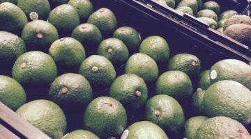 avocado verdi