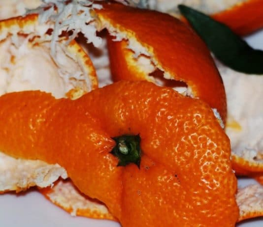 bucce arancia riutilizzo