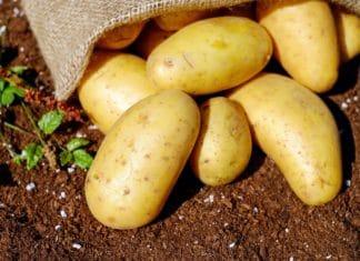 buccia-di-patata-benefici
