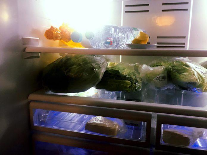 come-eliminare-cattivi-odori-dal-frigorifero