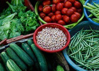 steroidi vegetali