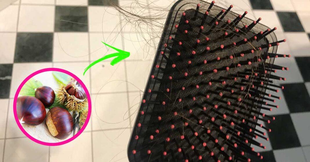 capelli-cadono-autunno-periodo-castagne