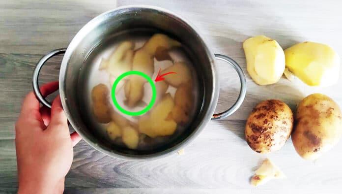 acqua-di-patate