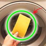 peli-in-lavatrice-rimedi
