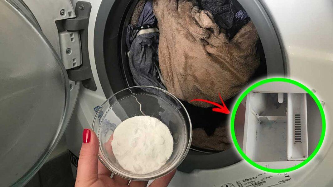 muffa-in-lavatrice