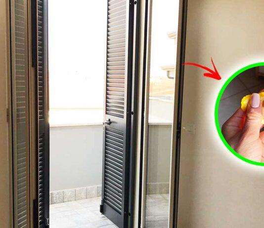 come-allontanare-insetti-finestre