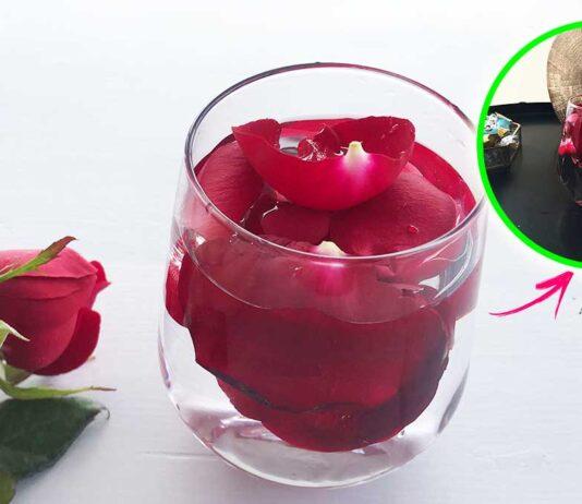 profumare-casa-con-rose