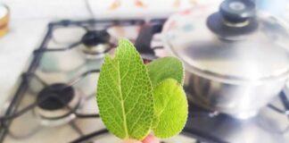 profumare-cucina-salvia